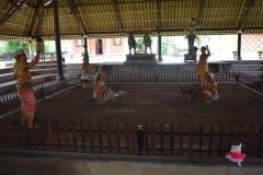 Babi Knorf op Bali 005