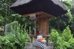 Babi Knorf op Bali 009 in religieuze dracht