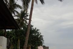 Candidasa Bali 009