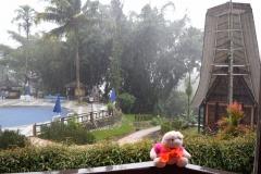 Babi Knorf in Toraja 007