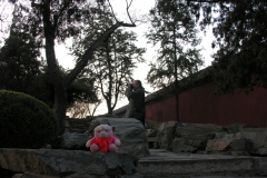 Bejing 2007 China 02 Hij schijnt iets te zien