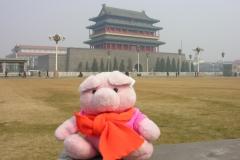 Forbidden City 2007 China 09 Die Architect wist niet waar het dak begon
