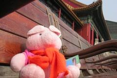 Forbidden City 2007 China 15 Vind je dat ik dom voor me uit kijk