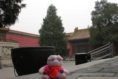 Forbidden City 2007 China 20 Met Chinese vrienden in gesprek, we gaan niet de pot in