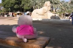 2006 Egypte 028._Memphis_met_graceland_sfinx