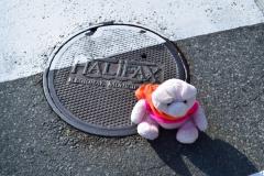 Novis Scotia Halifax 009