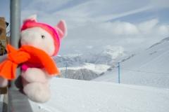 Knorf Les Deux Alpes 07