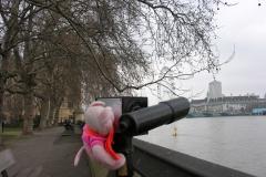 2007 London EnR feb 07 084
