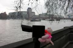 2007 London EnR feb 07 086