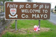 Mayo naar Betra 091 mayo