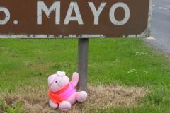 Mayo naar Betra 093 mayo