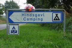 1999 DK 10 Terug op de camping