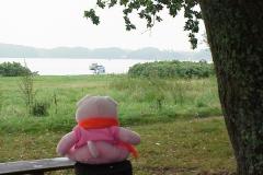 Funen Knorf kijkt uit over oostzee