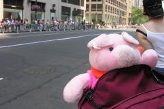 NY Empire Parade Park Friends 185