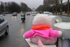 Parijs 2007 13 Waar is de gele trui en staat mijn staart er scherp op