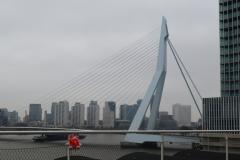 knorf-rotterdam-1