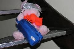 2007 03 De reiziger thuis