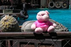 2005 USA Universal Studios LA '05 387