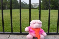 2005 USA Washington