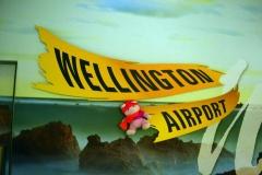 07 Naar Wellington en naar Sea Rotmann 059