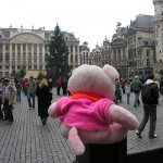 Knorf in Brussels