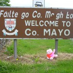 Knorf in Mayo