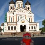 Knorf in Tallinn