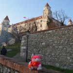 Knorf in Bratislava