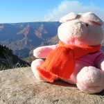 Knorf at the Grand Canyon