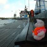 Knorf in Sandhamn