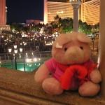 Knorf in Vegas