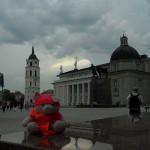 Knorf in Vilnius