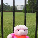 Knorf at the White House