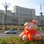 Knorf in Bucharest