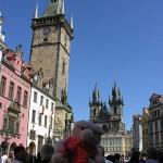 Knorf in Prague