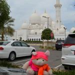 Knorf in Abu Dhabi